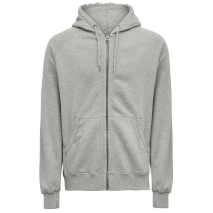 howies Robin Hooded Sweatshirt