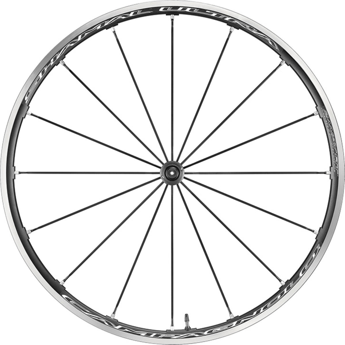 Roue de route avant Campagnolo Shamal Ultra C17 2-Way Fit - 700c
