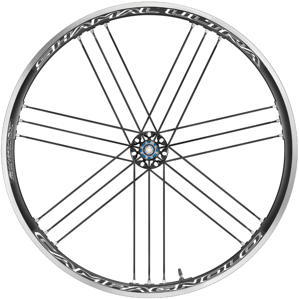 Campagnolo Shamal Ultra C17 2-Way Fit Rear Wheel - Ruedas traseras