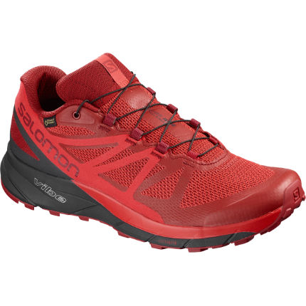 Salomon Sense Ride GTX Shoes
