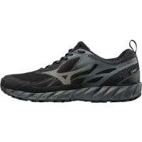 Mizuno Wave Ibuki GTX Shoes