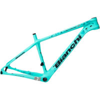 picture of Bianchi Methanol 29 SX Frame