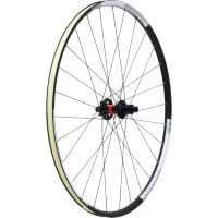 picture of DT Swiss DT240 on WTB Asym i19 XX1XC Rear Wheel
