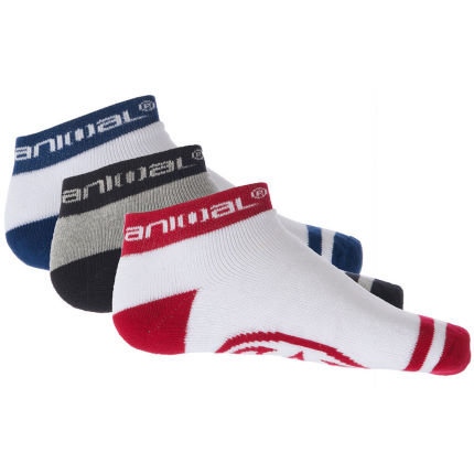 Animal Firebough 3 Pack Socks
