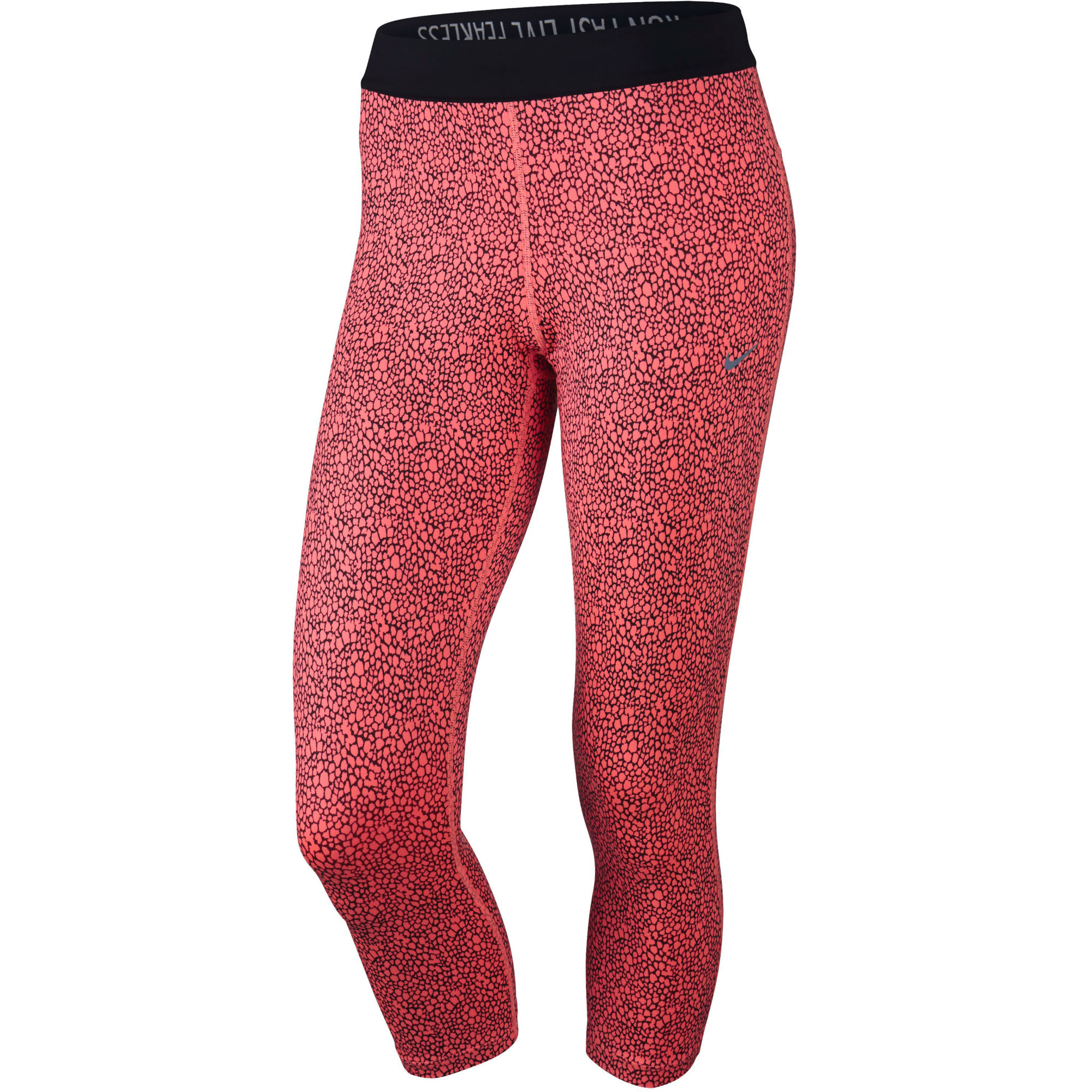 Women's Craft® Brilliant Light Tights:: Warm high-visibility thermal tights with ergonomic fit and key/music litastmaterlo.gq web exclusive item.