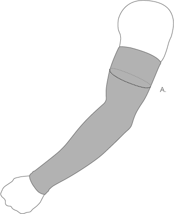 Zensah arm sleeve measure diagram