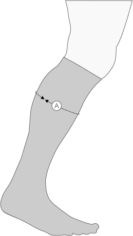 Compressport Calf Socks Measurement Diagram