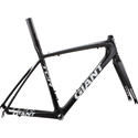 TCR Advanced SL ISP Frameset 2010