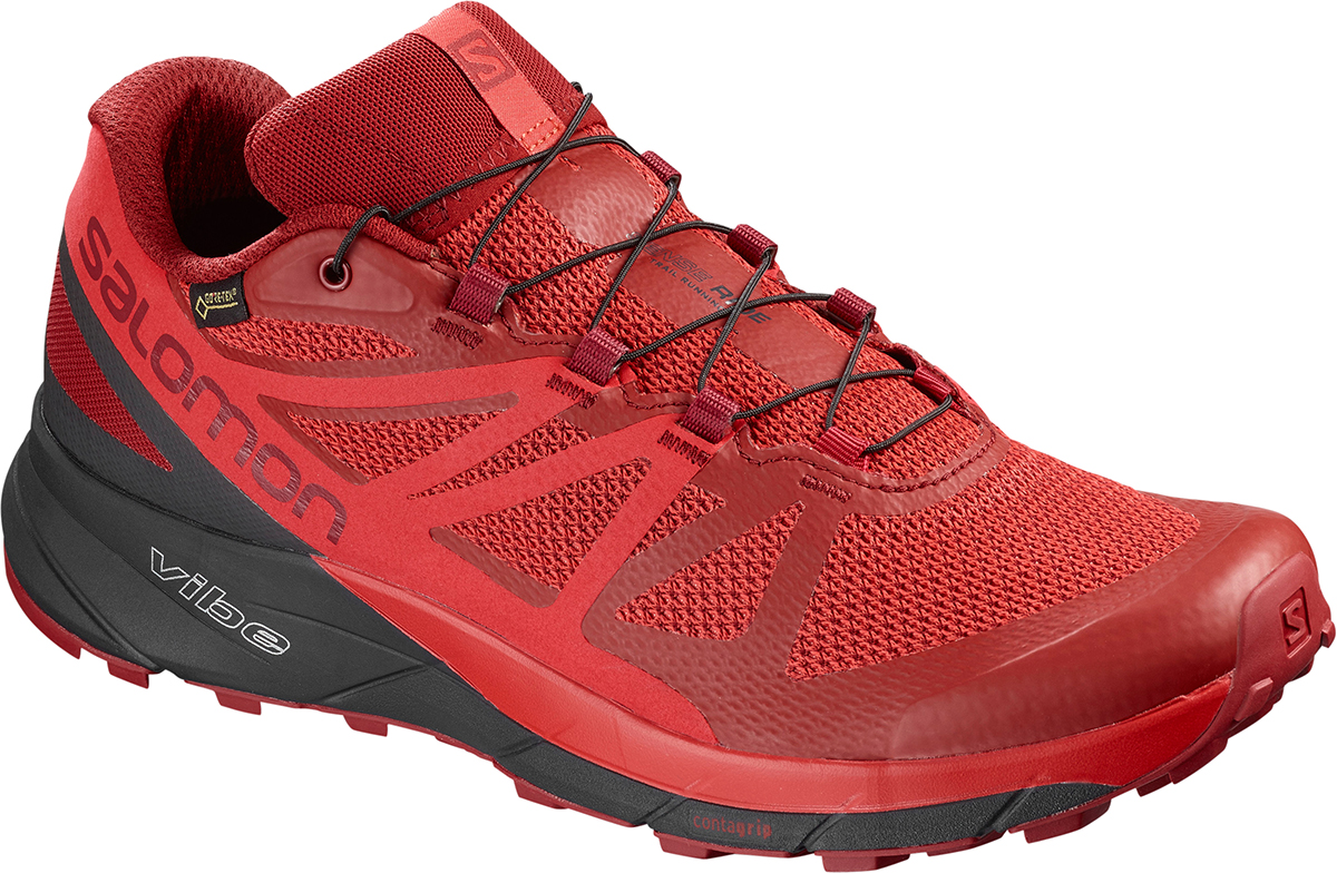 Zapatillas Salomon Sense Ride GTX