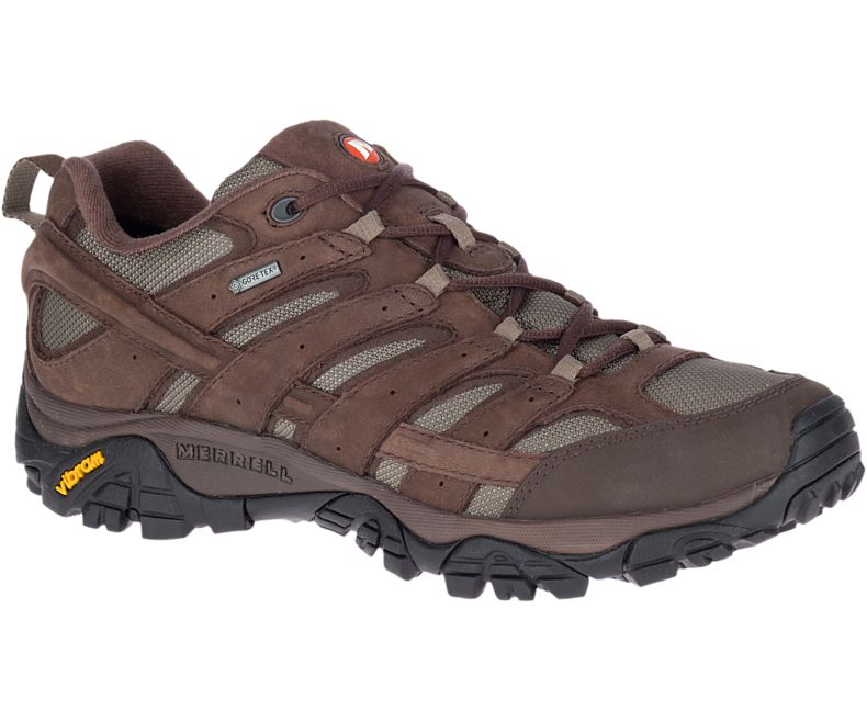 Merrell MOAB 2 Smooth GTX Shoes | Shoes and overlays