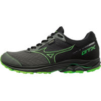 Comprar Mizuno Wave Rider GTX Shoes