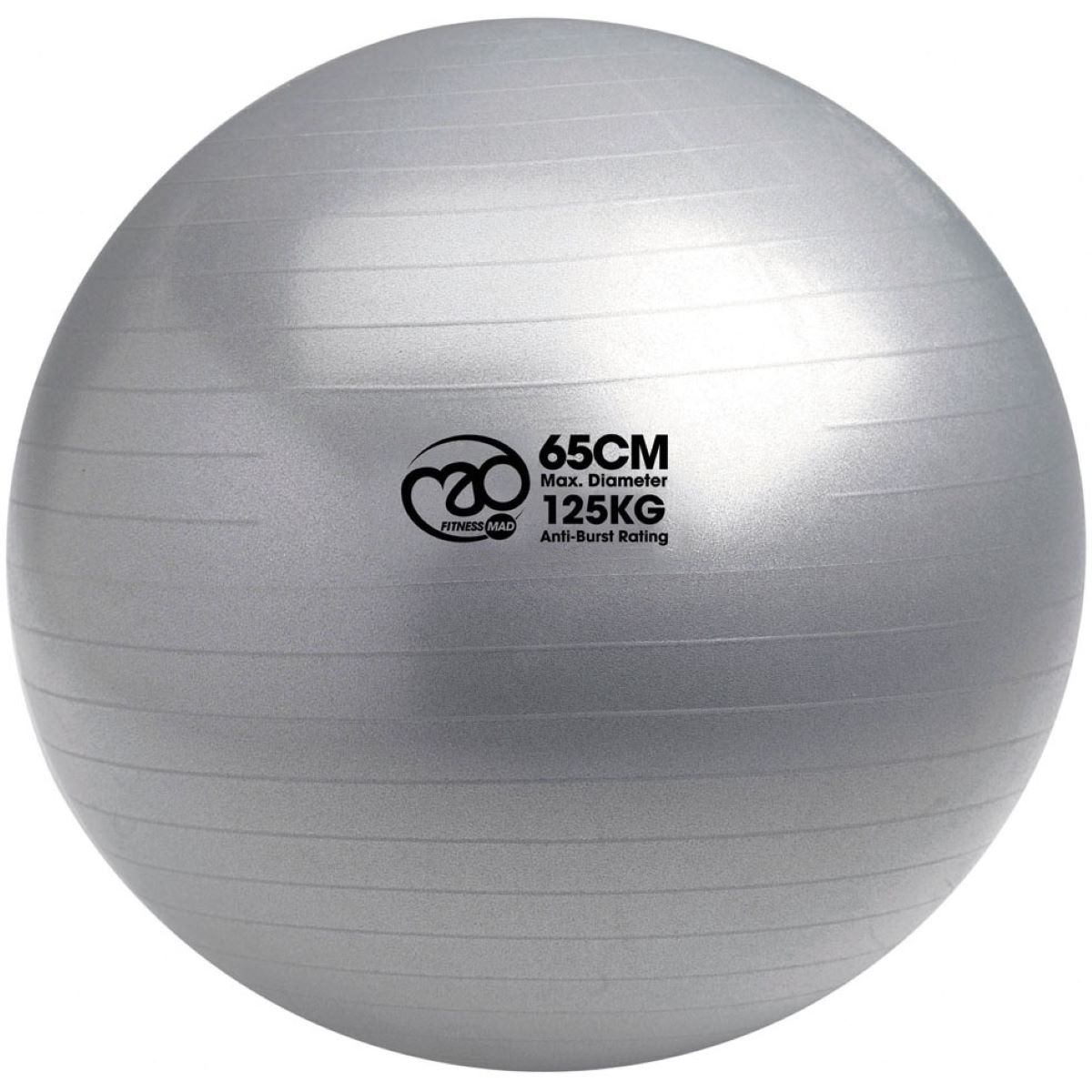 Swiss Ball & Pump (65cm Silver)   Gym Balls