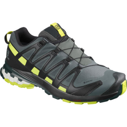 Salomon XA Pro 3D v8 Gore-Tex Shoes